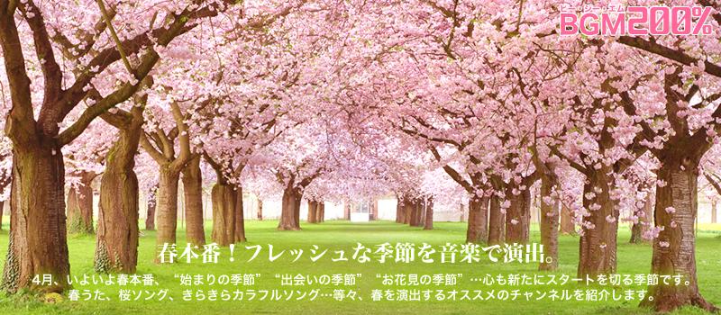 BGMセレクション 2017年4月のおすすめチャンネル