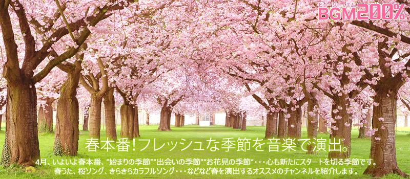 BGMセレクション 2020年4月のおすすめチャンネル